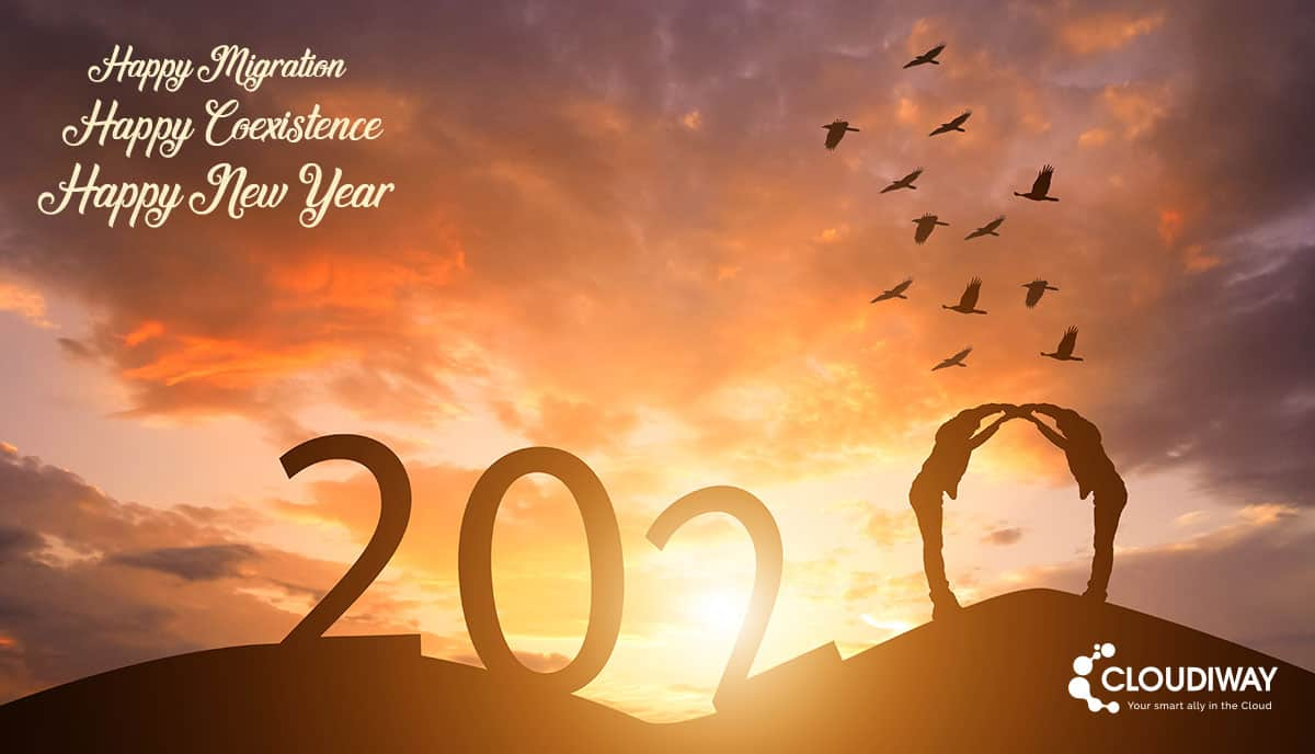 Migration and Coexistence, Happy New Year 2020